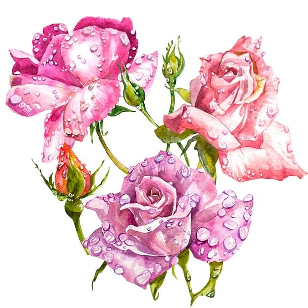 Aquarell blumenstrauß rosen Premium Fotos
