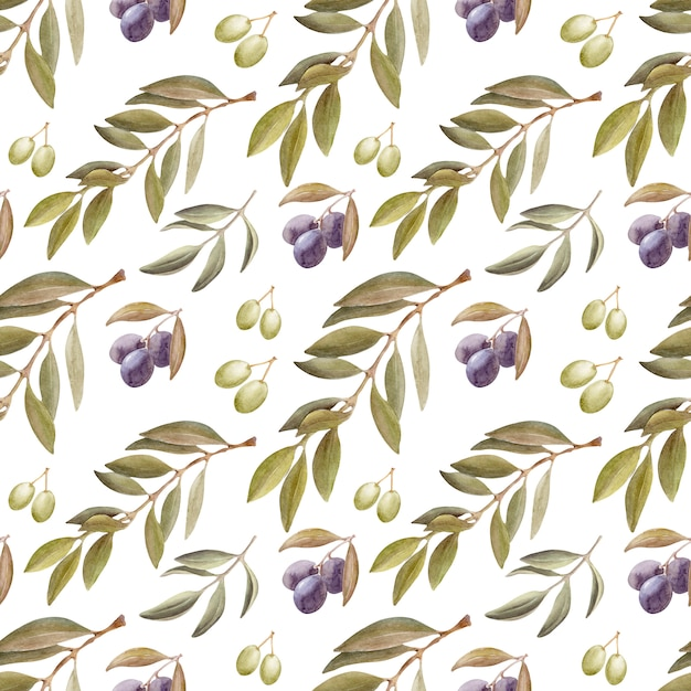 Aquarellzeichnung nahtloses muster mit blättern, früchten und olivenöl. öl und aromatische kräuter Premium Fotos