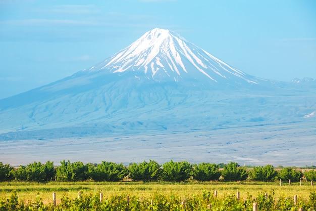 Ararat berg und feld Premium Fotos