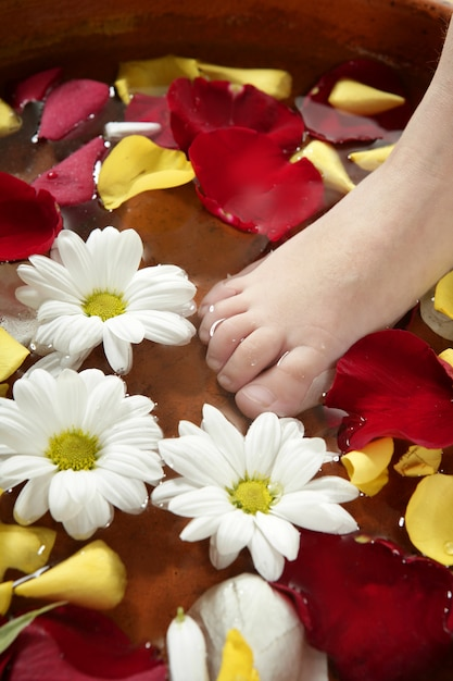 Aromatherapie, blumen fußbad, rosenblatt Premium Fotos
