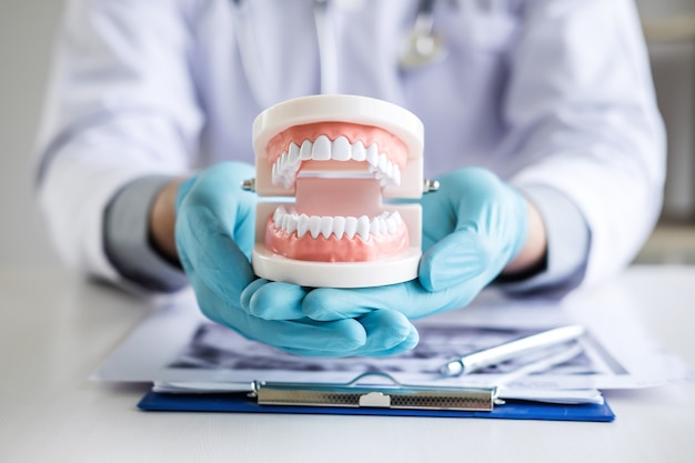 Arzt oder zahnarzt, der mit geduldigem zahnröntgenfilm arbeitet Premium Fotos