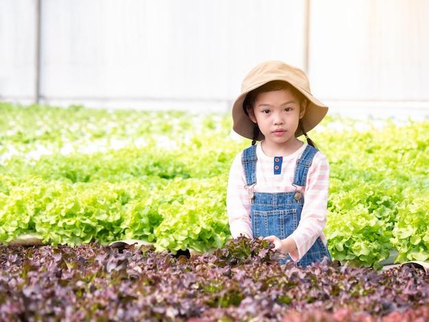 Asain kleines nettes mädchen, das lernt, wie man gemüse am wasserkulturgewächshaus anbaut. kinder- und gemüsegarten. Premium Fotos