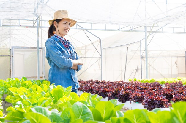 Asiatische landwirte am wasserkulturgemüsesalatbauernhof. Premium Fotos