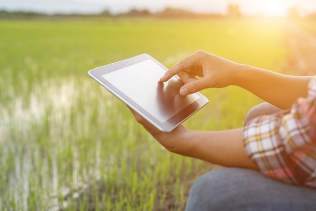Asiatischer junger landwirt, der tablette am grünen reisfeld verwendet Premium Fotos