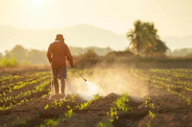 Asiatischer landwirt, der auf dem gebiet arbeitet und chemikalie sprüht Premium Fotos