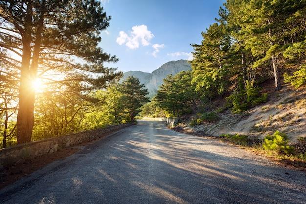 Asphaltstraße im sommerwald bei sonnenuntergang. krimberge Premium Fotos
