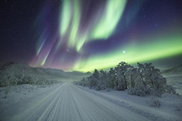 Atemberaubende aufnahme von farben, die am nachthimmel über einem winterwunderland tanzen Kostenlose Fotos