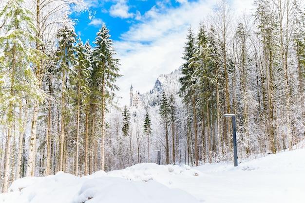 Atemberaubende aussicht auf den schneebedeckten wald und die berge unter dem bewölkten himmel Kostenlose Fotos