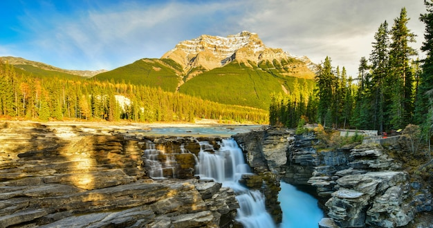 Athabasca fällt in herbst, jasper national park, alberta, kanada Premium Fotos