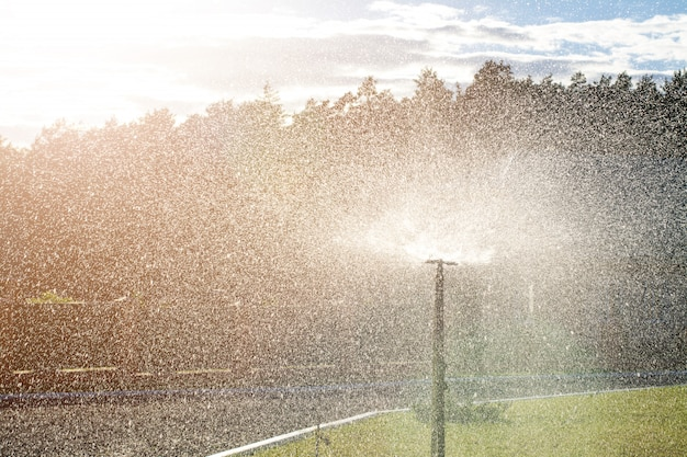 Atomatic-berieselungsanlage, die gras wässert Premium Fotos