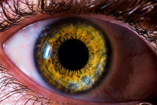 Auge Kostenlose Fotos