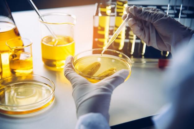Ausrüstungs- und wissenschaftsexperimente ölen strömenden wissenschaftler mit dem reagenzglasgelb, das forschung im labor macht. Premium Fotos