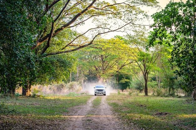 Auto in der forststraße, abenteuerreise Premium Fotos