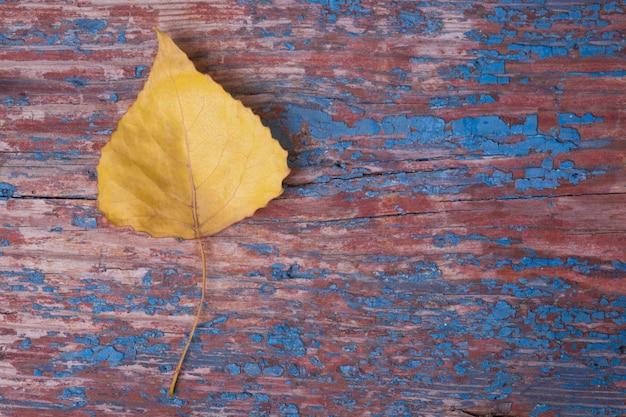 Autumn yellow-blatt auf hölzernem hintergrund Premium Fotos