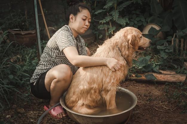 Baden des hundes, eine frau badet für ihren hundegolden retriever. Premium Fotos