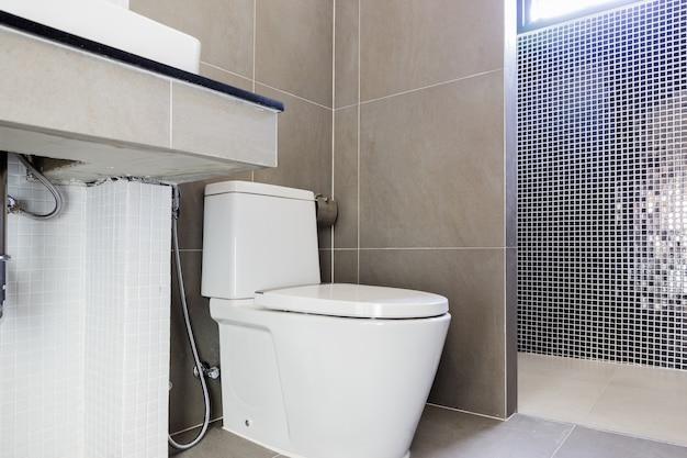 Badezimmer-Toilette des modernen Entwurfs Hauptbadezimmer ...