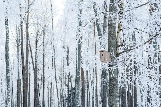 Bäume im schnee und frost. vogelhaus auf einem baum. Premium Fotos
