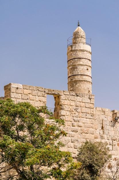 Bäume vor dem turm von david und den alten stadtmauern in jerusalem, israel Premium Fotos