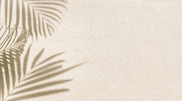 Banner des palmblattschattens auf sand, draufsicht, kopienraum Premium Fotos