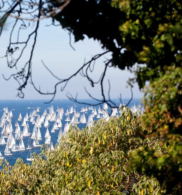 Barcolana 2010, die regatta von triest Premium Fotos