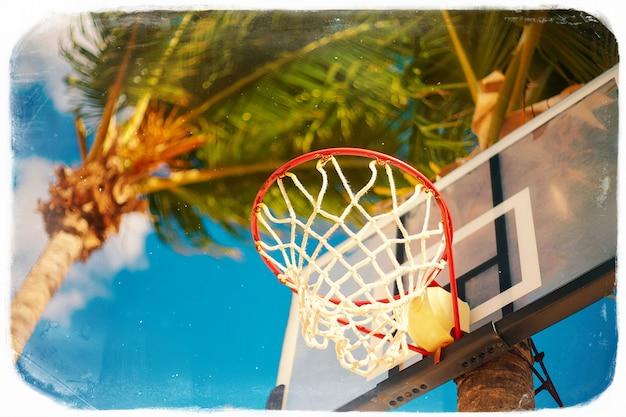 Basketballbrettring am sommertag auf blauem himmel und grüner baumpalme im retro-stil Kostenlose Fotos
