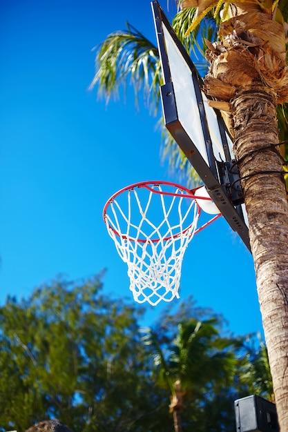 Basketballbrettring am sommertag auf palme des blauen himmels und des grünen baums Kostenlose Fotos
