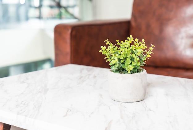 baum in topf dekoration auf dem tisch im wohnzimmer download der kostenlosen fotos. Black Bedroom Furniture Sets. Home Design Ideas