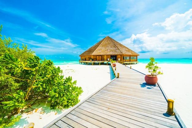 Baum Urlaub Schöne Sommer Lagune Download Der Kostenlosen Fotos