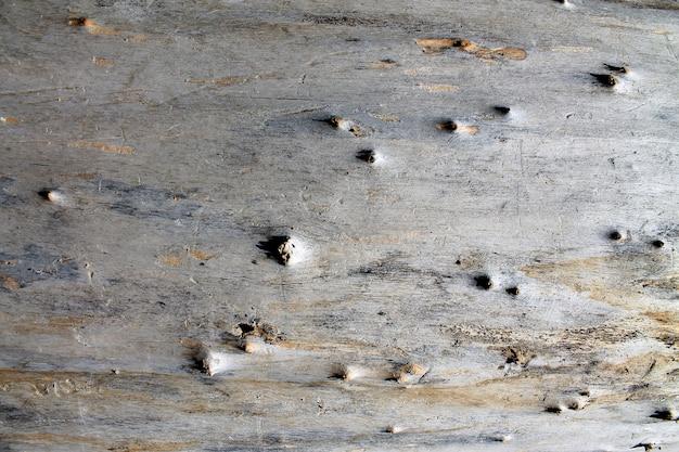Baumoberfläche holz hintergrund nahaufnahme Premium Fotos