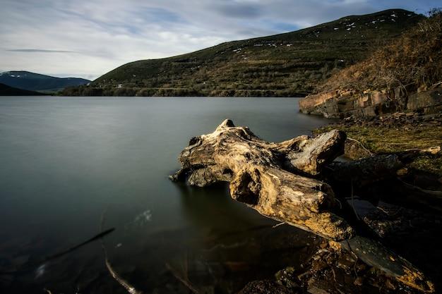 Baumstamm in einem ruhigen see im winter, in kantabrien, nordspanien Premium Fotos