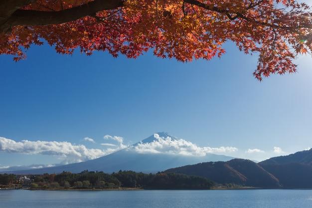 Berg fuji und see in japan mit blauem wolkenhimmel und rotahornbaum Premium Fotos