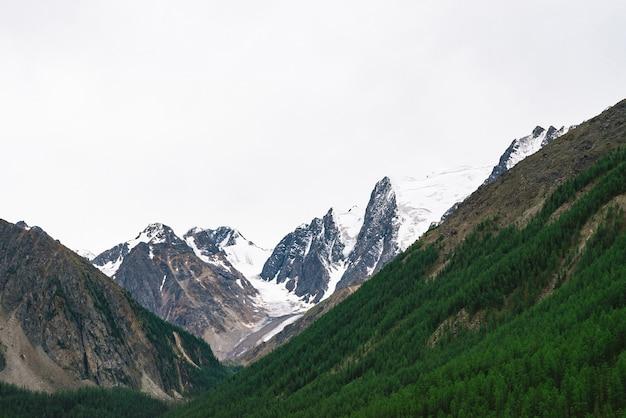 Berglandschaft mit schneebedeckten bergen und wald an hängen Premium Fotos