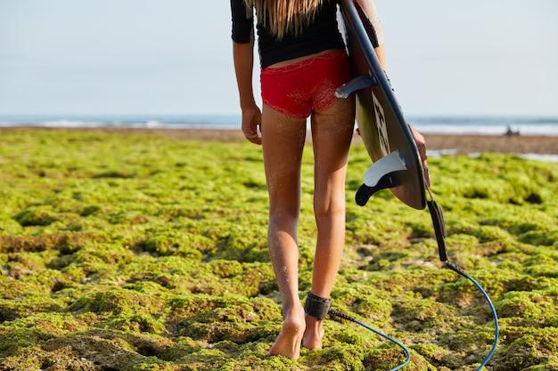 Beschnittenes bild einer sportlichen frau mit schlanken beinen und sexuellem gesäß, spaziergänge entlang der küste, die mit grüner vegetation bedeckt ist, trägt surfbrett mit legrope, bereit zum surfen. lebensrettendes konzept. Kostenlose Fotos