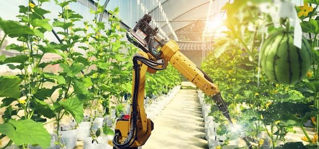 Bestäuben von obst und gemüse mit roboter. Premium Fotos