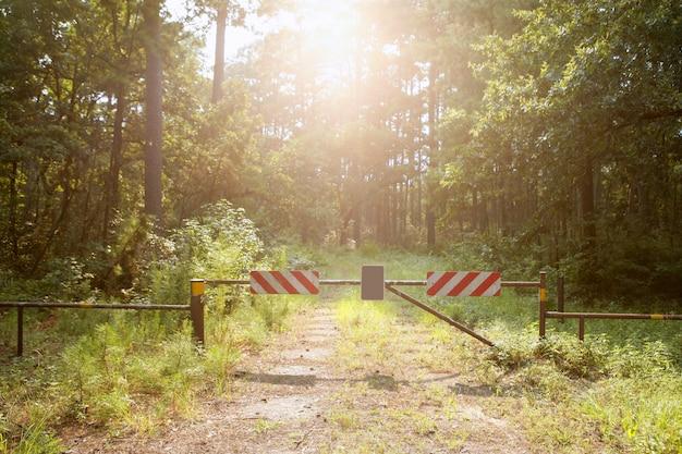 Betreten sie nicht den geschlossenen weg zum paradies, magischen lichtwald Premium Fotos