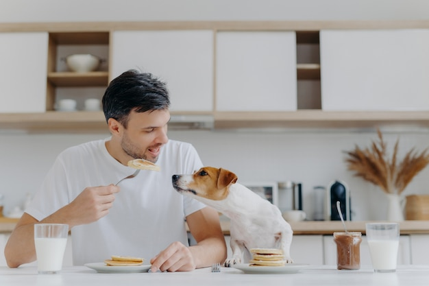 Bild von hübschem des mannes im zufälligen weißen t-shirt, isst geschmackvolle pfannkuchen, teilt nicht mit hund, wirft gegen kücheninnenraum auf, hat spaß, trinkt milch vom glas. frühstückszeit-konzept. süßer nachtisch Premium Fotos