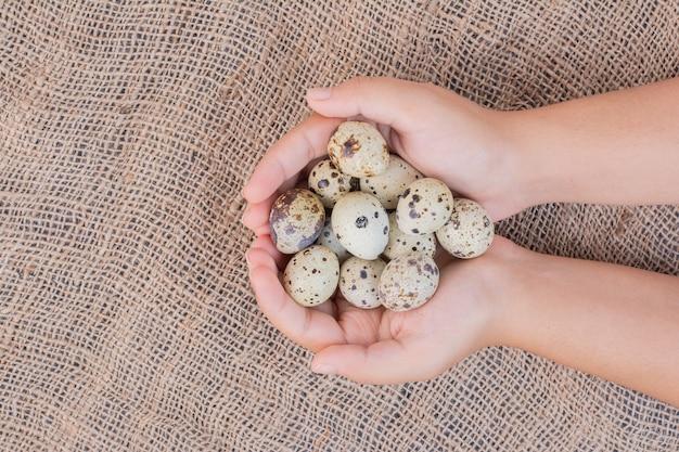 Bio-eier in den händen eines mannes Kostenlose Fotos