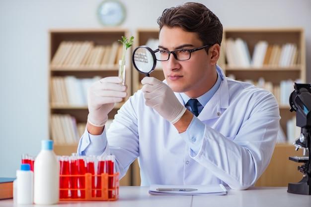 Biotechnologiewissenschaftler, der im labor arbeitet Premium Fotos