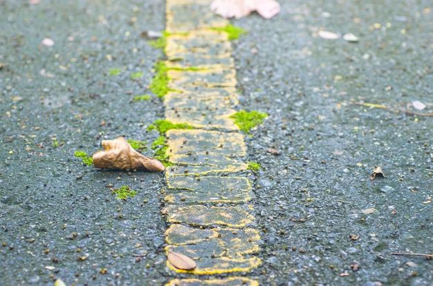 Blätter trocknen aus den grund, hintergründe, die muster, verwischt Premium Fotos