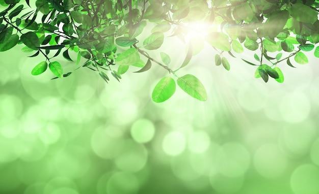 Blätter und gras gegen einen defocussed hintergrund Kostenlose Fotos