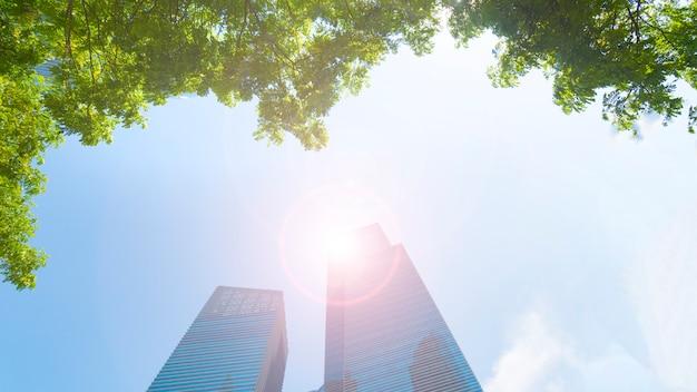 Blaue glaswand des perspektivenaußenmusters moderne gebäude mit grünem baum verlässt. Premium Fotos