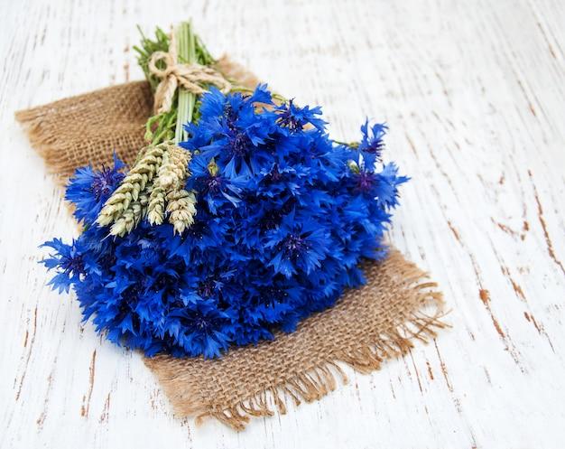 Blaue kornblumen Premium Fotos