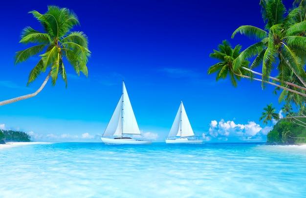 Blauer himmel und palme der yacht. Premium Fotos