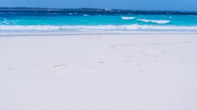 Blaues wasser wellen am ufer eines ozeans Kostenlose Fotos