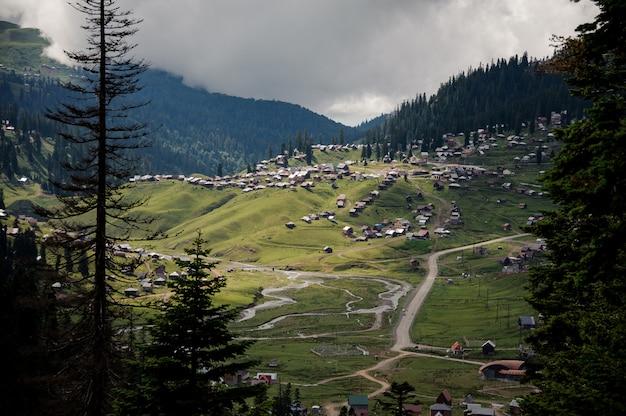 Blick auf die berge mit wald bedeckt und häuser auf den hügeln im vordergrund von immergrünen bäumen Premium Fotos
