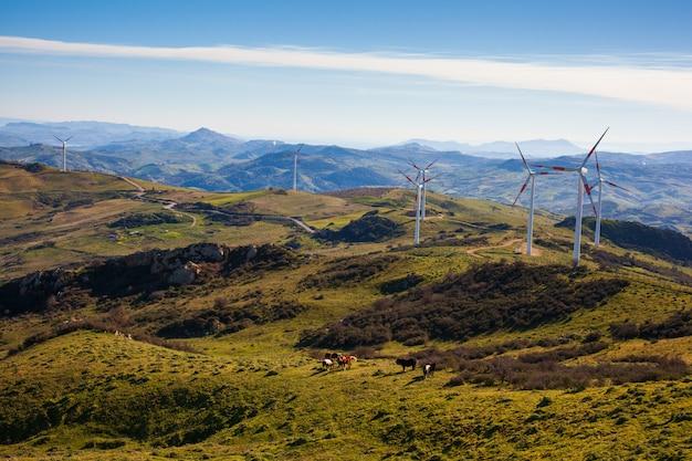 Blick auf windmühlen in der sizilianischen landschaft Premium Fotos