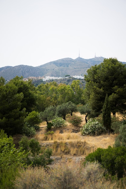 Blick von den bergen bis zum meer Kostenlose Fotos
