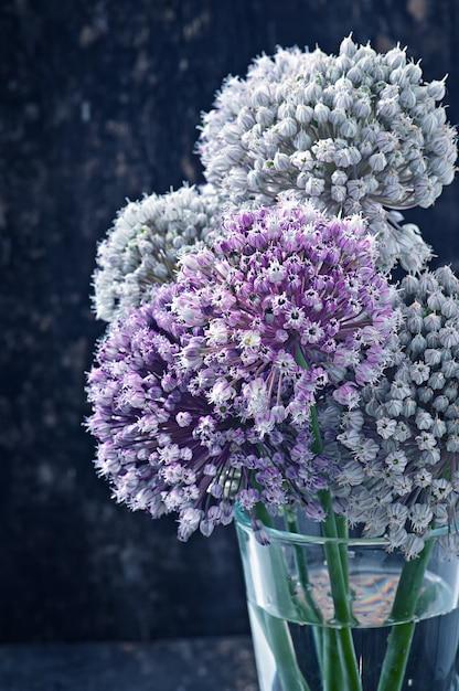 Blüht zwiebel auf altem hölzernem Kostenlose Fotos