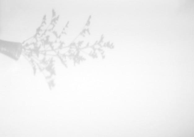 Blume im glasschattenüberlagerung auf weißem texturhintergrund, für überlagerung auf produktpräsentation, hintergrund und modell, sommersaisonkonzept Premium Fotos