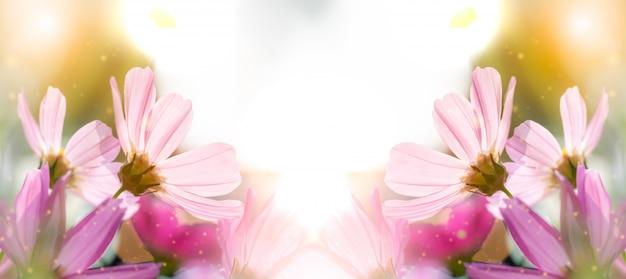 Blume ist liebe zu paaren am valentinstag Premium Fotos